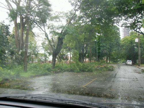 Após vento forte ( centro da terrinha)... (24/Out/09)