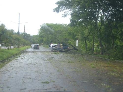 """Após a """"fúria' do vento ...algumas ruas da 'terrinha'.... (foto: Ed Sahd)"""