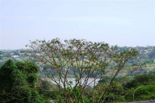 Paranazão cheio visto na altura da Vila Portes. ( foto M.Elvira).