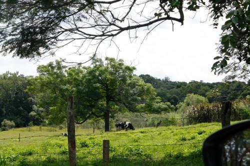 Encantos rurais de Foz...