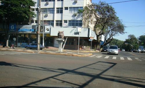 """No """"click"""" a coruja no semáforo da JK com Av. Rep. Argentina."""